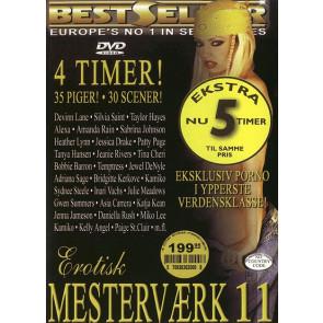 Erotisk Mesterværk #11