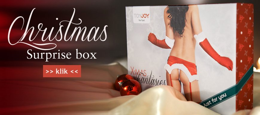 X-Mas Fantasies Kit fra Toy Joy er årets frække julegave til dig og din partner